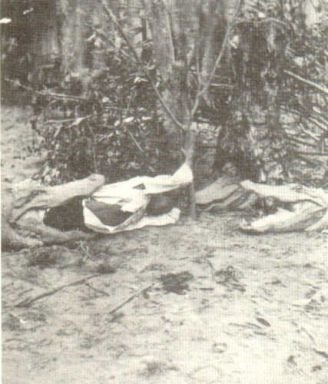 Florida during slavery slave masters would take an enslaved black child tie a rope around his or her legs put them in the water and use them for ALLIGATOR BAIT
