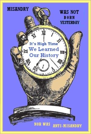 its-high-time-misandry-flkr (1)